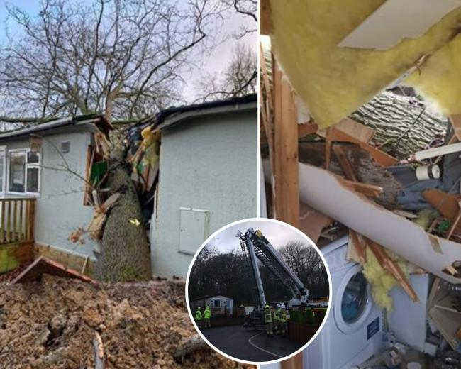 A tree crashed into a home at Pebble Hill mobile home site. Pictures: Leanne Higgs