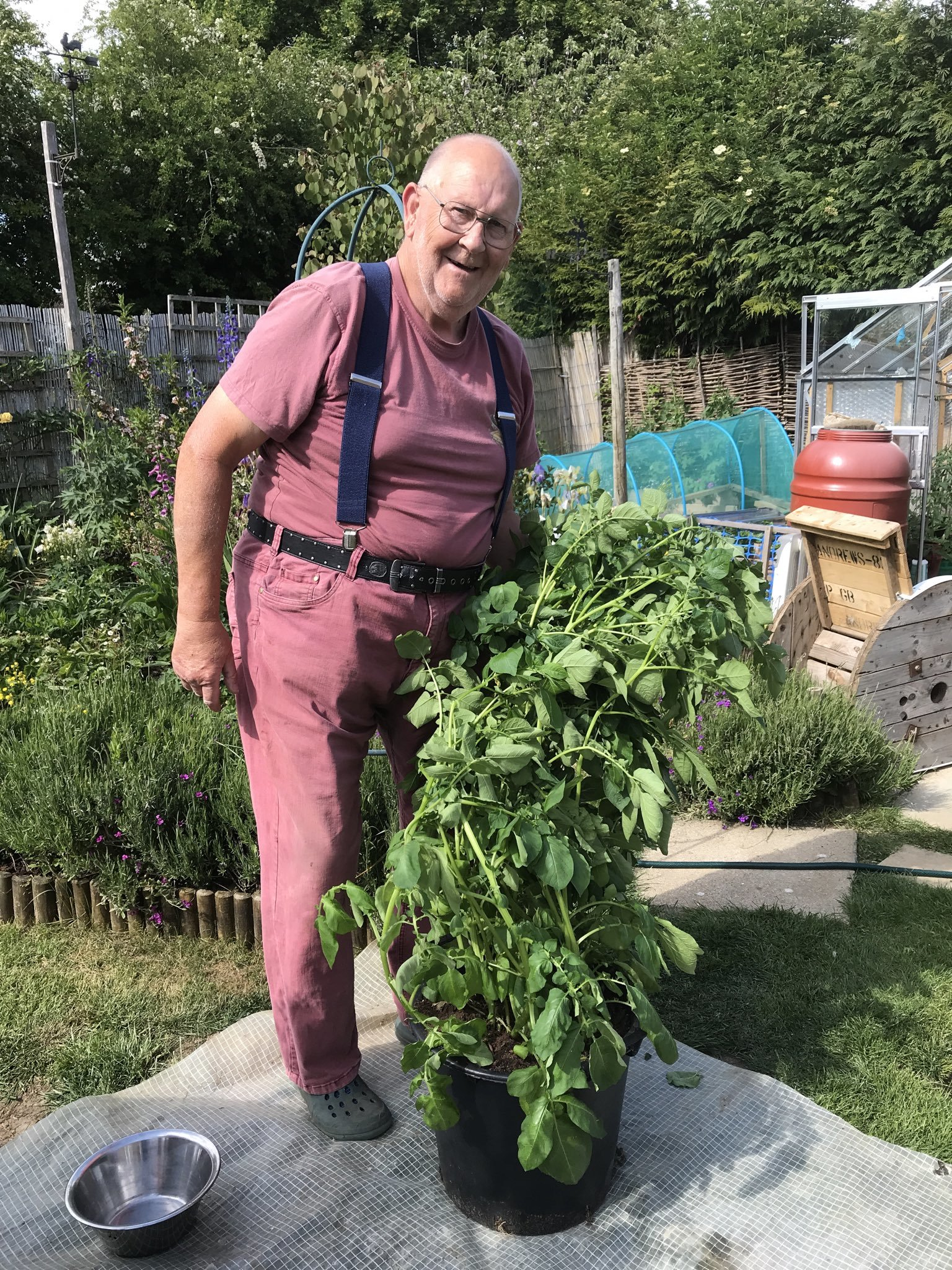 Gerald Stratford went viral on Twitter with pictures from his garden. Picture: Gerald Stratford Twitter