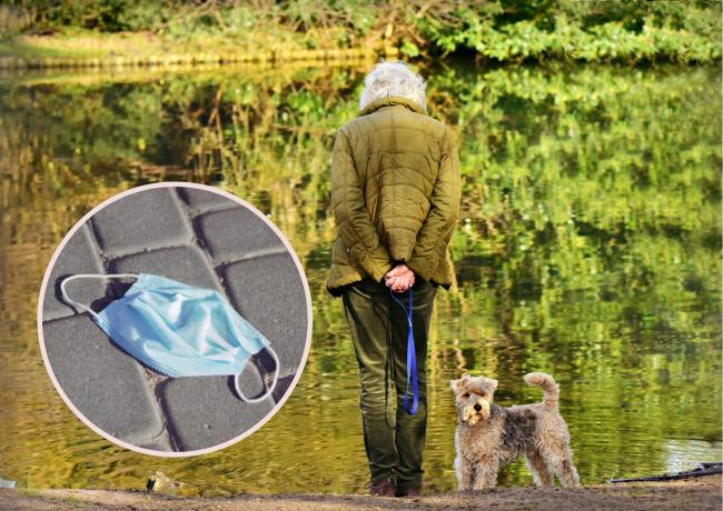 Dog dies after swallowing disposable mask in Oxfordshire park