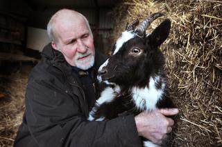 thisisoxfordshire: Derek Turner with the goat that was attacked
