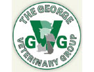 The George Veterinary Group