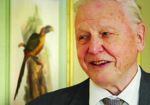 thisisoxfordshire: Sir David praises grace and style of artist's work