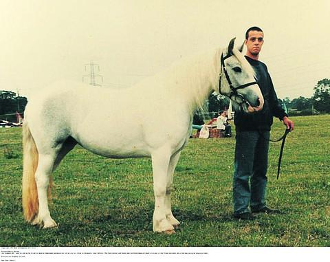 Ian Simpson and his Shire horse Sampson