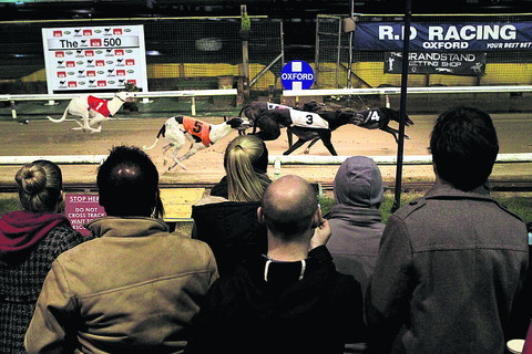 Life-long supporters watch final dog race
