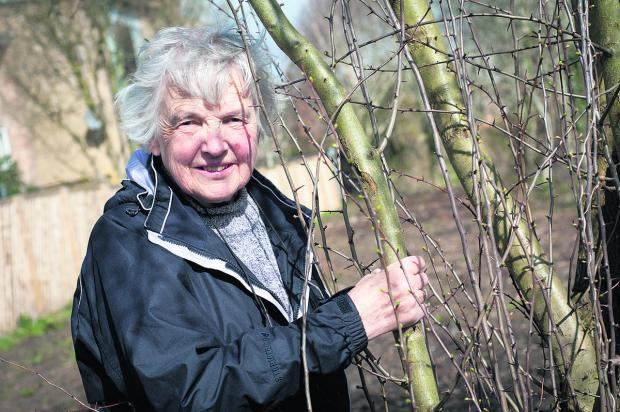 thisisoxfordshire: Oxford Urban Wildlife Group secretary Janet Keene at Boundary Brook Nature Park
