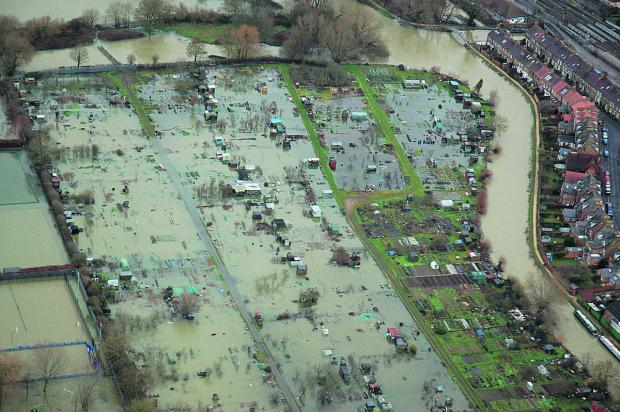 Allotments off Botley Road in Oxford inundated with flood water yesterday as levels kept rising                                             Picture: Lee Ingram