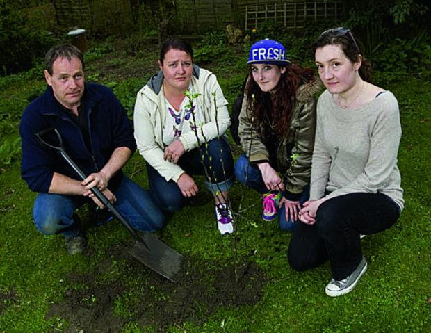 thisisoxfordshire: Trax staff Peter Shacklady, Helen Bates, Charlotte Walker and Olivia Davies plant an apple tree in memory of Connor