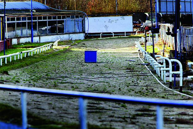 thisisoxfordshire: Weeds grow at the Greyhound and speedway track in Oxford Stadium. Would-be buyers want action now