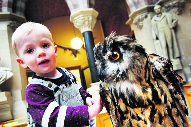 Owl event proves a real hoot for fascinate