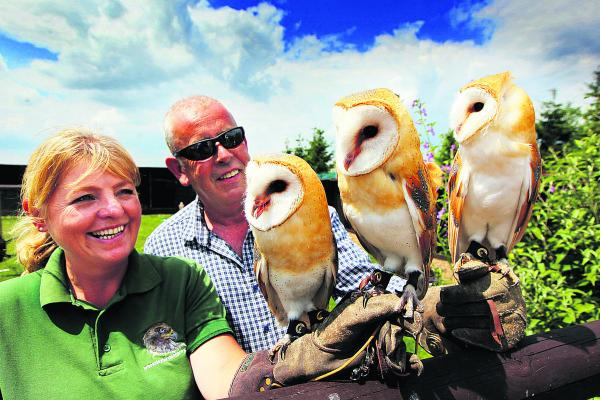 Jayne and Clive Jones with the baby owls