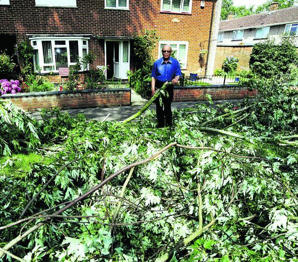 thisisoxfordshire: Abraham Clarke, 85, of Ladenham Road, stands amongst branches, which broke away from a tree next to his home during the storm and landed in his front garden