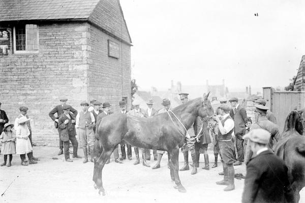 thisisoxfordshire: A war office purchasing party inspects a horse in Chipping Norton in 1914. Picture: Oxfordshire County Council, Oxfordshire History Centre