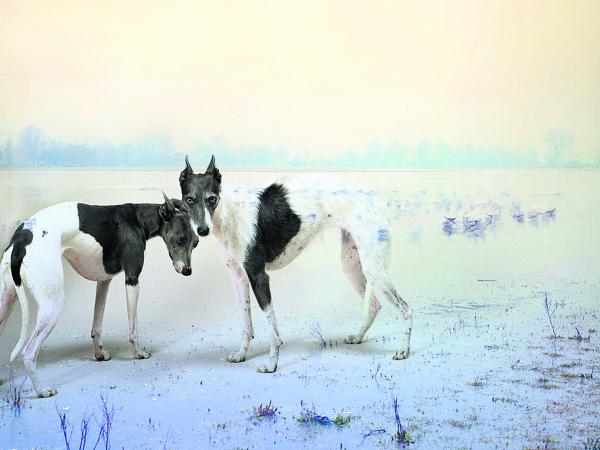 Dolly and Nora, is among the pictures in the Port Meadow Dogs exhibition by Rory Carnegie.