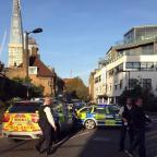 thisisoxfordshire: Police at the scene where a teenager was stabbed to death in south London
