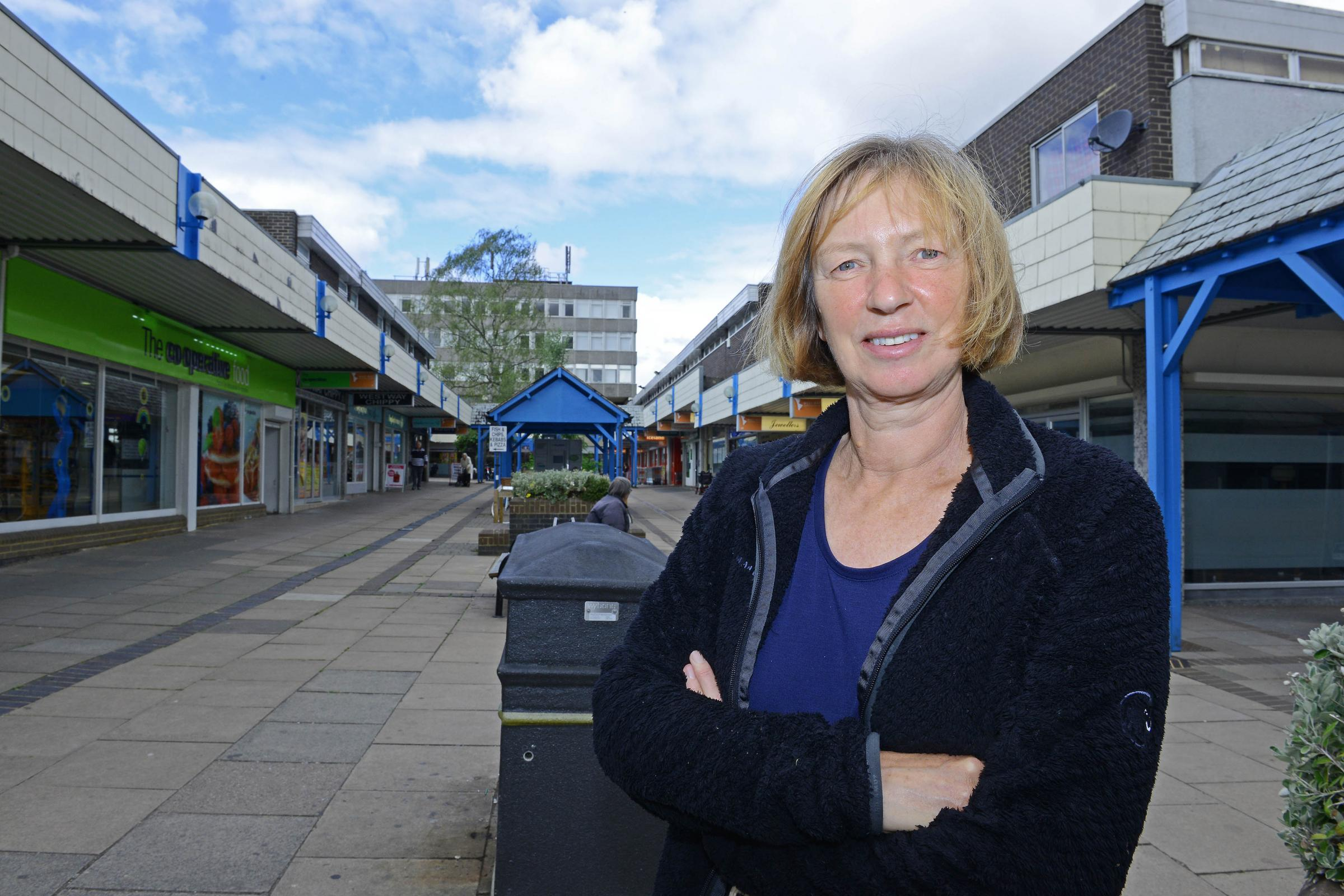 West Way Community Concern co-chairwoman Mary Gill