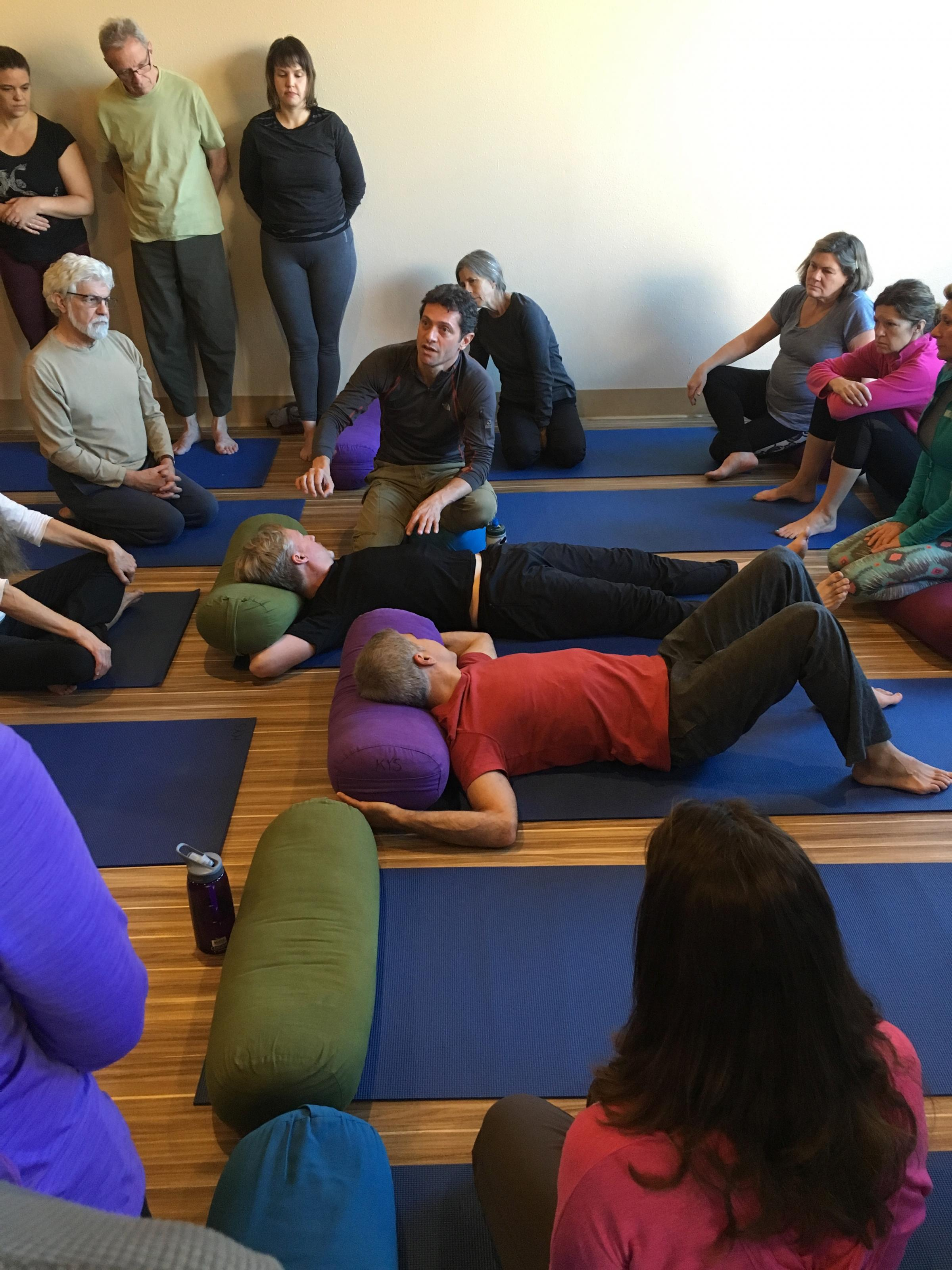Kaiut Yoga Introductory Workshop - Yoga for Biomechanical Health & Aging with Grace