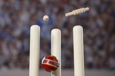 CRICKET: Derek Pringle opens new nets at Moreton