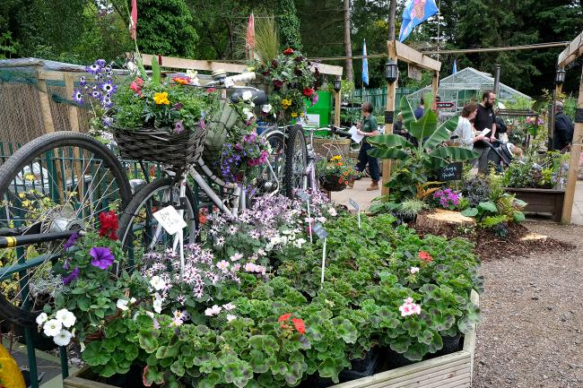 Gardens at the Horticultural Therapy Garden Centre in Cutteslowe Park, Oxford, earlier this year. Picture: Ric Mellis